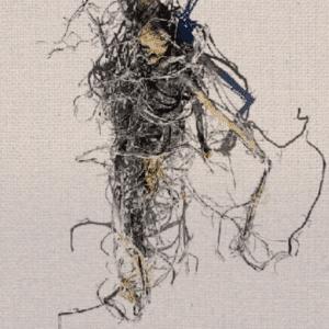 hemp root