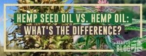 Hemp Oil/CBD Oil vs. Hemp Seed Oil