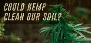 Can Hemp Help Our Soil?