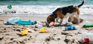 Could Hemp Plastic Help?